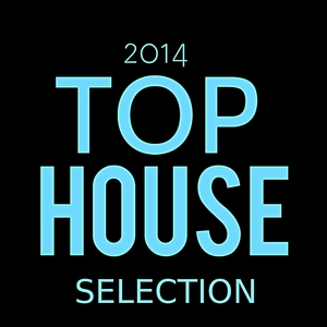VARIOUS - Top House Selection 2014