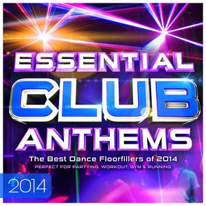 DJS INTERNATIONAL - Essential Club Anthems 2014 - The Best Dancefloor Fillers For 2014 (Deluxe Digital Dance Edition)