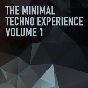 BONDI, Giacomo/NICOLA GIUNTA/ALEX/CHRIS - The Minimal Techno Experience