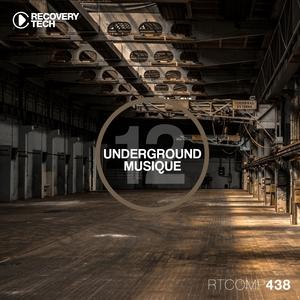 VARIOUS - Underground Musique Vol 12