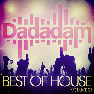 VARIOUS - Dadadam Best Of House Vol 1