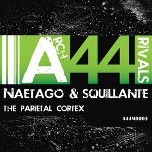 NAETAGO/SQUILLANTE - Arch Rivals 003: The Parietal Cortex