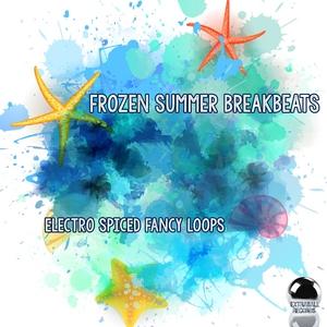 VARIOUS - Frozen Summer Breakbeats (Electro Spiced Fancy Loops)