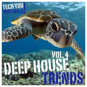 VARIOUS - Deep House Trends Vol 4