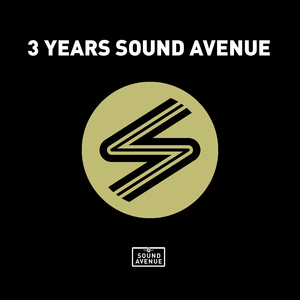 VARIOUS - 3 Years Sound Avenue