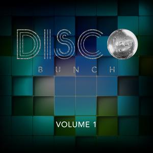 VARIOUS - Disco Bunch Vol 1