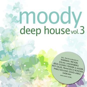 VARIOUS - Moody Deep House Vol 3