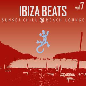 VARIOUS - Ibiza Beats 7