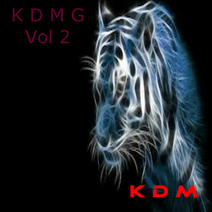 VARIOUS - Kingdom Digital Music Group Project Vol 2