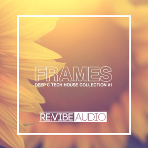 VARIOUS - Frames Issue 1: Deep & Tech House Collection