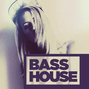 VARIOUS - Bass House 2014