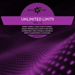 VARIOUS - Unlimited Limits Vol 12