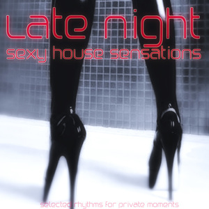 VARIOUS - Late Night: Sexy House Sensations