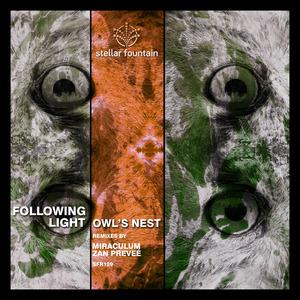 FOLLOWING LIGHT - Owls Nest