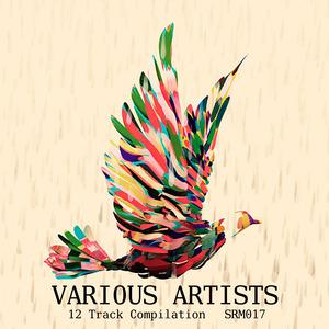 VARIOUS - Various Artists Compilation
