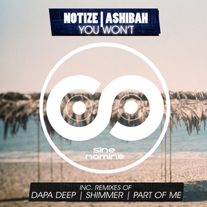 NOTIZE feat ASHIBAH - You Won't