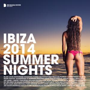 VARIOUS - Ibiza 2014 Summer Nights (Deluxe Version)