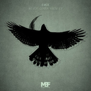 EMDE - Never Gonna Know EP