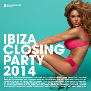 VARIOUS - Ibiza Closing Party 2014 (Deluxe Version)