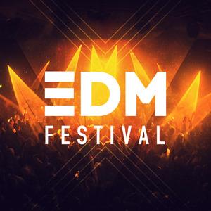VARIOUS - EDM Festival