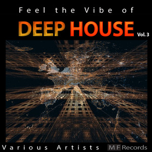 VARIOUS - Feel The Vibe Of Deep House Vol 3