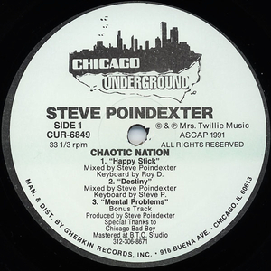 POINDEXTER, Steve - Chaotic Nation