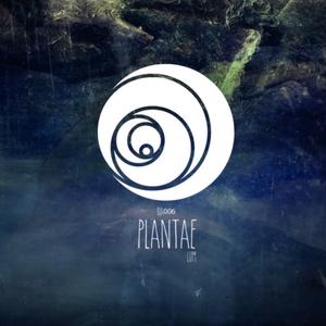 PLANTAE - Lum