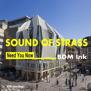 BDM INK - Sound Of Strass Need You Now