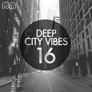 VARIOUS - Deep City Vibes Vol 16