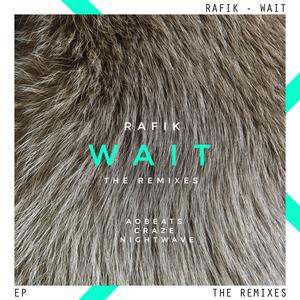RAFIK - Wait EP (remixes)