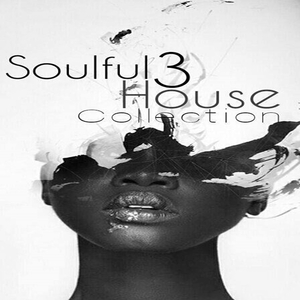 VARIOUS - Soulful House Collection Vol 3