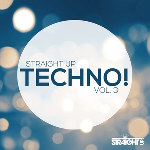 VARIOUS - Straight Up Techno Vol 3
