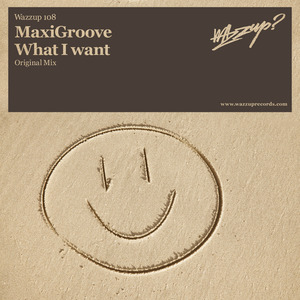 MAXIGROOVE - What I Want