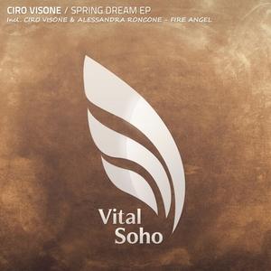 CIRO VISONE/ALESSANDRA RONCONE - Spring Dream EP