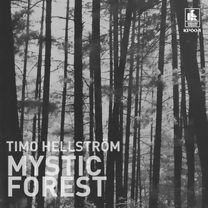 HELLSTROEM, Timo - Mystic Forest