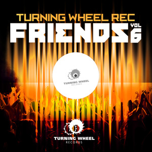 VARIOUS - Turning Wheel Rec Friends Vol 6