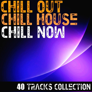 VARIOUS - Chill Out Chill House Chill Now 40 Tracks Collection
