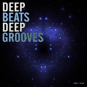 VARIOUS - Deep Beats Deep Grooves