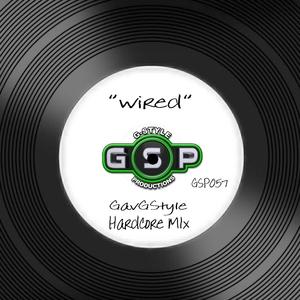GAVGSTYLE - Wired