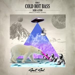 ASTON, Sebb - Cold Hot Bass