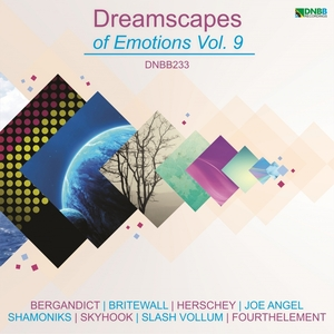 VARIOUS - Dreamscapes Of Emotions Vol 9