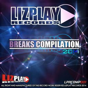 VARIOUS - Breaks Compilation