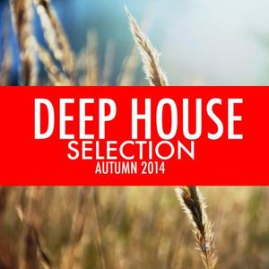 VARIOUS - Deep House Selection Autumn 2014