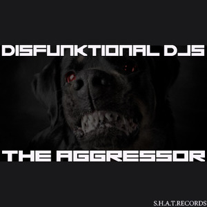 DISFUNKTIONAL DJS - The Aggressor