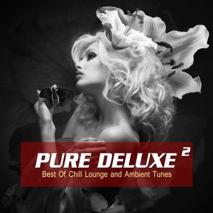 VARIOUS - Pure Deluxe Vol 2 (Best Of Chill Lounge And Ambient Tunes)