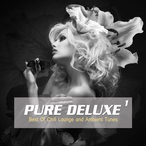 VARIOUS - Pure Deluxe Vol 1 (Best Of Chill Lounge And Ambient Tunes)
