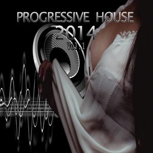 VARIOUS - Progressive House 2014