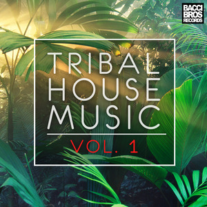 VARIOUS - Tribal House Music Vol 1