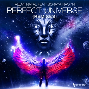 NATAL, Allan - Perfect Universe (remixes)