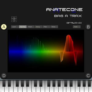 ANATECONE - BAG A TRAX